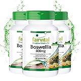 Boswellia Weihrauch 400mg, Boswellia serrata - indischer Weihrauch, mind. 65% Boswelliasäuren - 360 Tabletten (3x 120 vegetarische Tabletten)