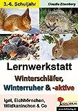 Lernwerkstatt Winterschläfer, Winterruher & -aktive: Igel, Eichhörnchen, Wildkaninchen & Co.