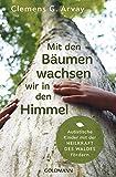 Mit den Bäumen wachsen wir in den Himmel: Autistische Kinder mit der Heilkraft des Waldes fördern