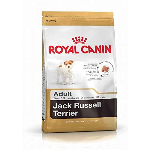 ROYAL CANIN Jack Russel Adult 7,5 kg, 1er Pack (1 x 7.5 kg)