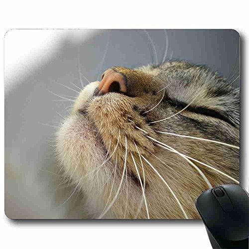 funny-tapis-de-souris-design-animal-22-x-178-cm-chat-avec-prise-en-charge-filaire-ou-sans-fil-blueto