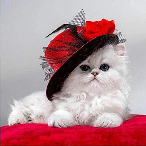 LamIzzoo Voller Kreisdiamant Eine Katze in einem Hut DIY 5D Diamant Malerei Kreuzstich scherzt Stickerei Diamant Mosaikausgangsdekor