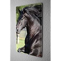 Blechschild Pferde Deko Wildpferde Prärie Metall Deko Wand Schild 20X30 cm