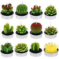 FANTESI 12 Piezas Velas Cactus Vela suculenta Decorativas Cactus Tealight Velas de Luz de Té de