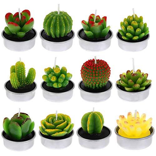 FANTESI 12 Piezas Velas Cactus, Vela Suculenta Decorativas Cactus Tealight Velas de Luz de Té de Cactus para Día de San Valentín Cumpleaños Fiesta de Boda Decoración (Style 2)