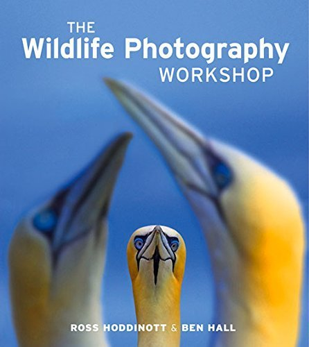 Wildlife Photography Workshop, The by Ross Hoddinott & Ben Hall (2013-01-18)