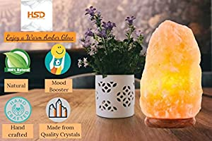 HSD Himalayan Salt Direct B2-300 Natural Himalyan Rock Salt Crystal Lamp | Natural Orange 2-3 KG Lamp