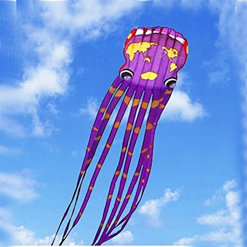 FZSWD Drachen Hochwertige Große Weiche Drachen 30 Mt Weltkarte Krake Kite Reel Ripstop Nylon Fallschirm Fliegen SpielzeugLuftballon