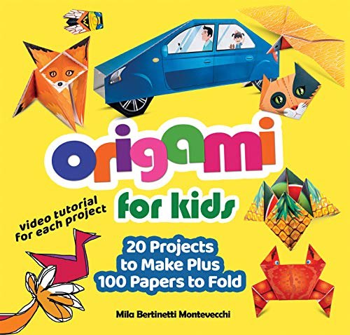Origami for Kids  20 Projects to Make Plus 100 Papers to Fold 0d4722a4181ef