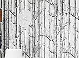 CYWALL Tapeten Minimalistisch 3D Birke Tapeten Hölzer Bäume Holzmaserung Vliestapete,A-0.53m*10m