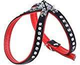 Garronda Hundegeschirr aus weichem Leder 624+ (Schwarz/Rot, S (35 cm))