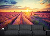 Selbstklebende Fototapete - Lavendelfeld in Südfrankreich - Vintage - 100x65 cm - Wandtapete – Poster – Dekoration – Wandbild – Wandposter - Bild – Wandbilder - Wanddeko