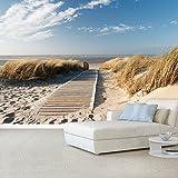 Fototapete Ocean Way 366x254cm Tapete Meer Ozean Strand Dünen Steg deco.deals