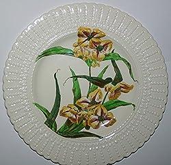 Cauldon Pottery Botanical Flower Series Vintage 1920 Plate