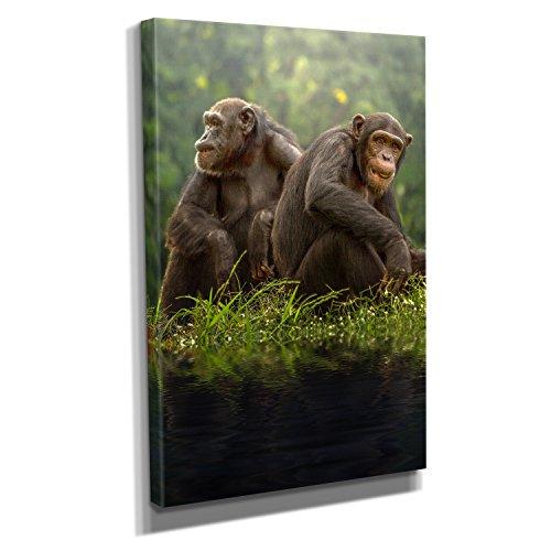 Nerdinger Schimpansen - Kunstdruck auf Leinwand (20x30 cm) zum Verschönern Ihrer Wohnung. Verschiedene Formate auf Echtholzrahmen. Höchste Qualität.