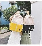 SEBAS Home Persönlichkeit Rucksäcke High School Student Umhängetasche Nylon Stitching Schoolbag Rucksack (Color : Blue)