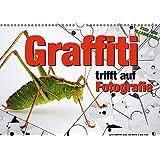 Graffiti trifft auf Fotografie (Wandkalender 2017 DIN A3 quer): Wenn drei sich treffen, entsteht Kunst! (Monatskalender, 14 Seiten ) (CALVENDO Kunst)