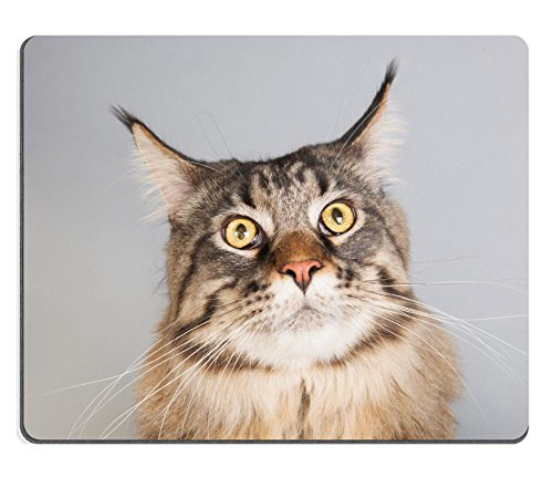 liili-mouse-pad-natural-rubber-mousepad-image-id-24860716-portrait-pedigree-maine-coon-cat-on-gray