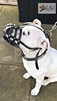 Muselière pour chien en cuir véritable clair pour Staffordshire Bull Terrier Motif, cuir pour chien Staff
