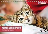 """hundkatzemaus – Katzen Kalender 2015 (Tischkalender 2015 DIN A5 quer): Der """"hundkatzemaus""""-Kalender 2015: 12 bezaubernde Katzenmotive für das ganze den Stubentigern. (Tischkalender, 14 Seiten)"""