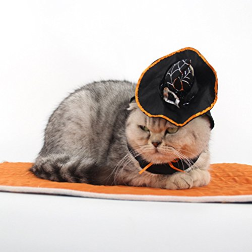 Zhuhaitf Pet Welpe Doggy Soft Halloween Charming Hat Elastic Suitable für Cats & Dogs