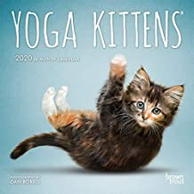 Yoga Kittens 2020 Mini Wall Calendar