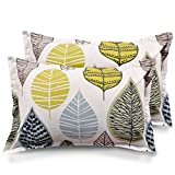 #5: Ahmedabad Cotton 2 Piece Cotton Pillow Cover Set - 18