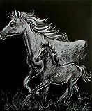 WASO-Hobby - 4er Scrapy Kratzbilder Set - Pferde Motive/Silber