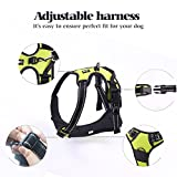 Rabbitgoo Adjustable Refletive Dog Harness Outdoor Pet Vest with Handle Easy Control for Medium Dogs & Durable Material Green