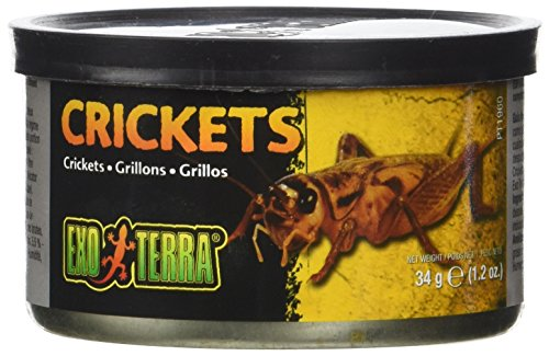 Hagen Exo Terra Reptiles Canned Food, Small Crickets 34g. -
