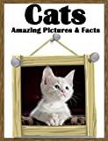 Cats: Amazing Pictures and Facts about Cats! ( With Cute Photos for Kids! ) children book, sweet kitten pictures