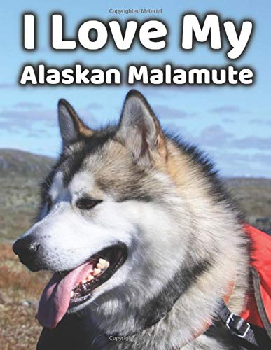 I Love My Alaskan Malamute Blank Journal Notebook: 200 Pages, 8.5″ x 11″
