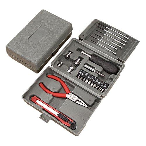 Joyeee 24-teiliges Mini Haushalts-Werkzeugkoffer Werkzeug-Set Handwerkzeug-Set Präzisions-Kit Schraubendreher Kit mit der Plastik-Aufbewahrungsbox - Ideal für den Hausgebrauch