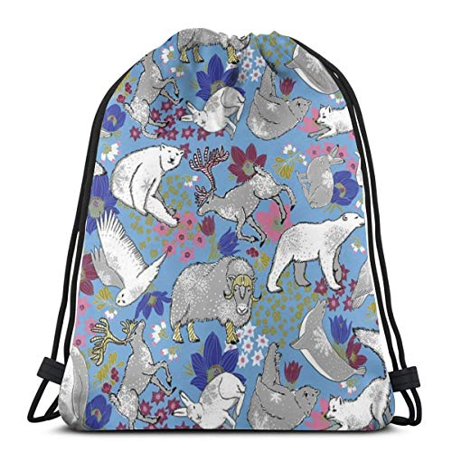 beautiful& Arctic Summer On Boy Blue_7242 3D Print Drawstring Backpack Rucksack Shoulder Bags Gym Bag for Adult 16.9'x14'