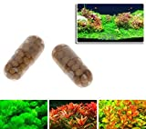 AST Works 40 Pcs Aquatic Plant Water Root Fertilizer Condensed Aquarium Fish Tank Cylinder