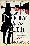 A Particular Eye for Villainy (Lizzie Martin 4)