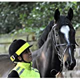 Equisafety Reflective Horse Riding Hat Band, Colours: Pink Or Yellow