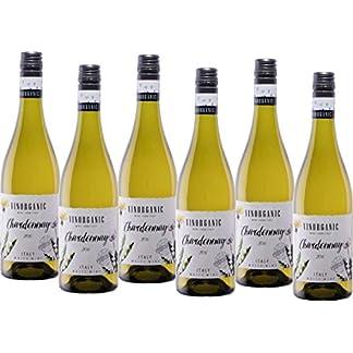 Vinorganic-Chardonnay-Bio-Weiwein-trocken-6-x-075-l