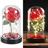 Lunartec Dekoblumen: Edle Kunst-Rose mit LED-Beleuchtung in Echtglas-Kuppel, rot (Wohnzimmer-Deko)