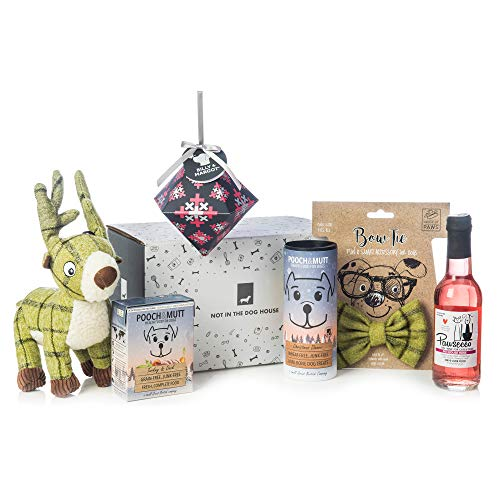 Dog Christmas Gift Set  - Lunch, Treats, Bow Tie, Pawsecco and Toy