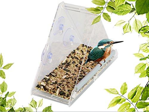 Natur Fenster Vogelfutterspender – Dreieckiges Acryl Vogelhaus – mit Ablauflöchern und 2 Saugnäpfen - 3
