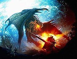 Monster Hunter Poster auf Seide/Siebdrucke/Tapete/Wanddekoration 410312410