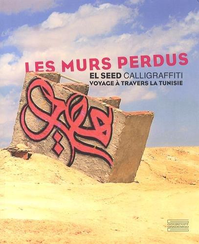 Les murs perdus : Calligraffiti, voyage à travers la Tunisie par El Seed, Mehdi Ben Cheikh