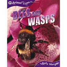 Animal Lives: Bees and Wasps (QED Animal Lives)