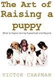 The Art of Raising a Puppy: What to expect during puppyhood and beyond