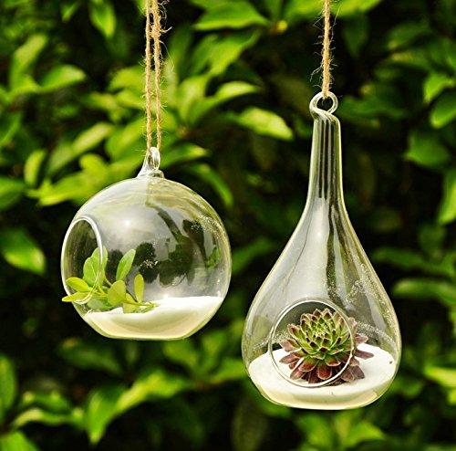 siyaglass-lot-de-2-vases-en-verre-pour-plantes-en-forme-dorbe-et-goutte