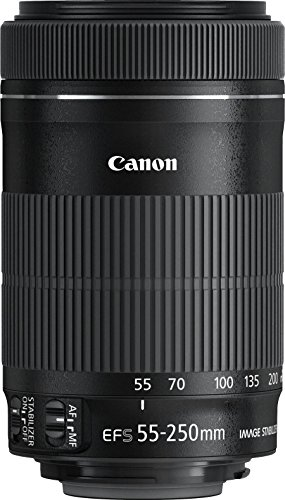 Canon EF-S 55-250mm 1:4-5.6 IS STM Tele-Zoomobjektiv - 4