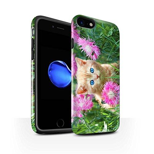 STUFF4 Glanz Harten Stoßfest Hülle / Case für Apple iPhone 8 Plus / Glass Wein Muster / Süße Kätzchen Kollektion Garten