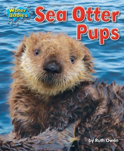 sea-otter-pups-water-babies-by-ruth-owen-2012-08-06
