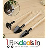 Princely Wooden Handle 3 Pc Garden Tools Kit For Mini Plants